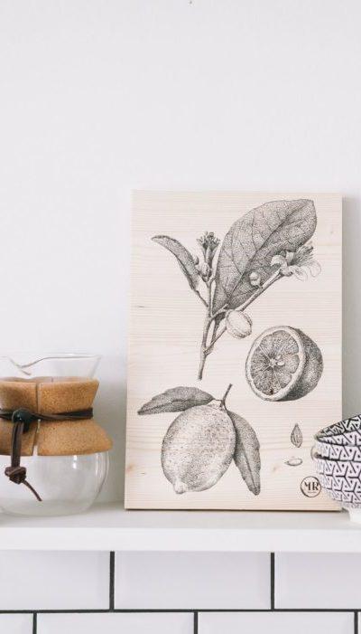Tableau botanique en bois Agrume Mr Naturaliste