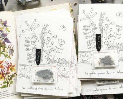 Carte à graines Papillonnage