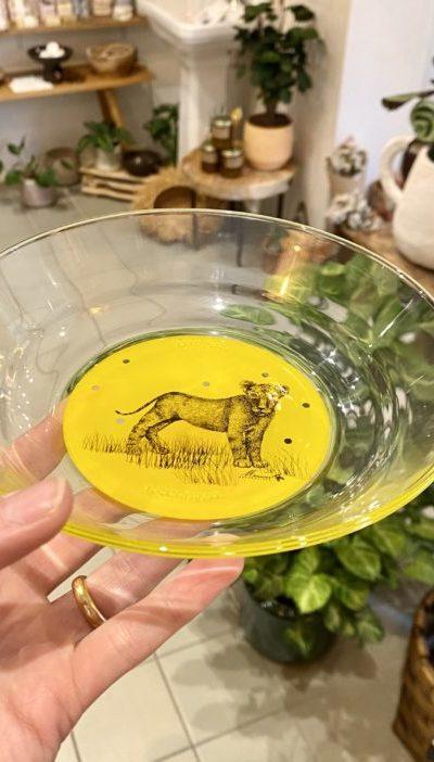 Assiette creuse en verre Lionceau Mr Naturaliste